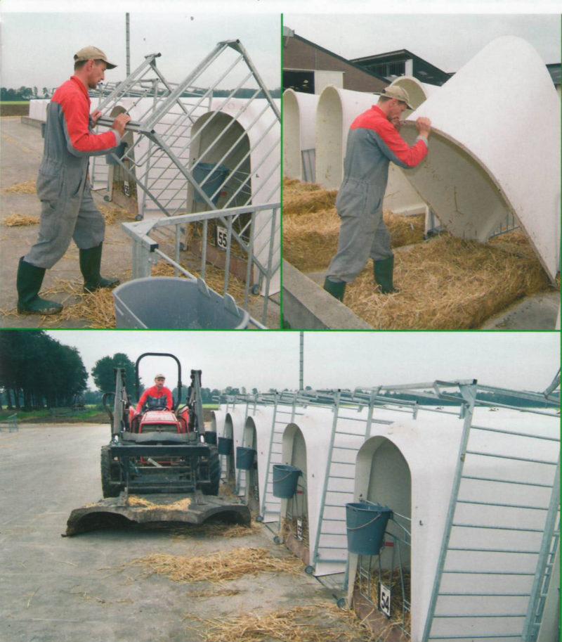 домик для телят