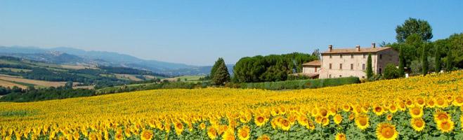 АгроТуры по США и Европе