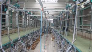 Доильные залы для коров