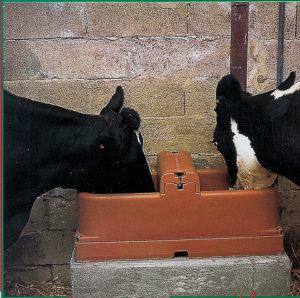 Поилка с подогревом для коров ISOBAC