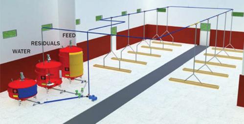 Система жидкого кормления свиней