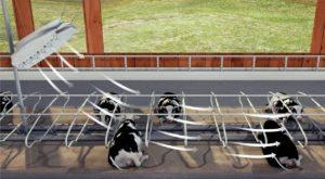 Вентилятор для коров Storm Fan