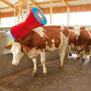 щетка чесалка для коров